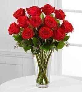 E2-4305 THE LONG STEM RED ROSE BOUQUET - VASE INCLUDED