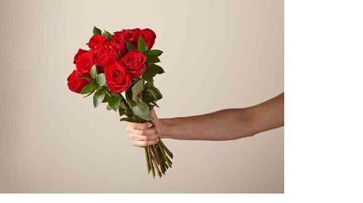 12 Rosas Vermelhas, Sem V..