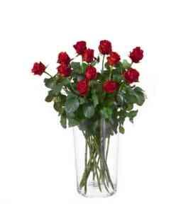 7AT64818AT-12 rosas verme..