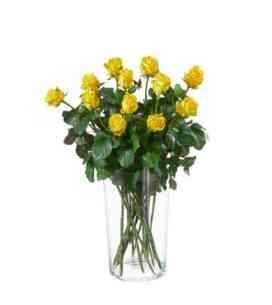 7AT64824AT-12 rosas amare..