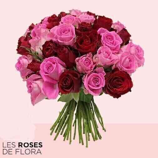 Brassée de roses ..