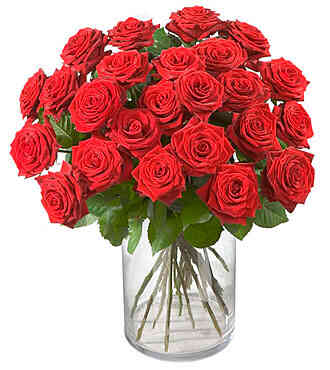 7CH48504CH-24 Red Roses..
