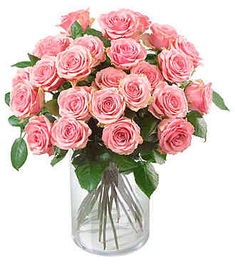 7CH49371CH-24 Pink Roses..