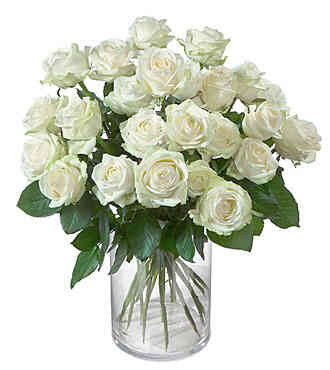 7CH49372CH-24 White Roses..
