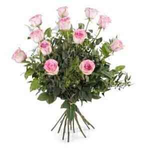12 Long-stemmed Pink Rose..