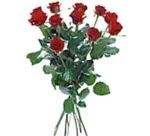 Bouquet with 12 red roses..