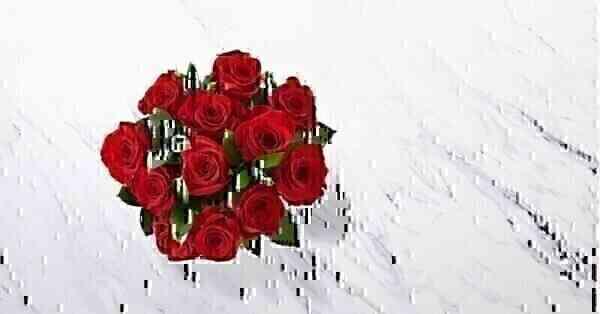 Bouquet Com Uma Duzia de ..