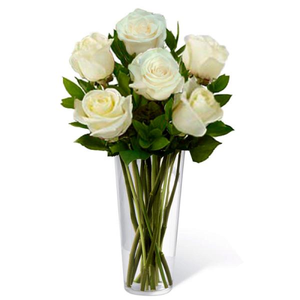 Rosas Brancas 6 em Vaso..