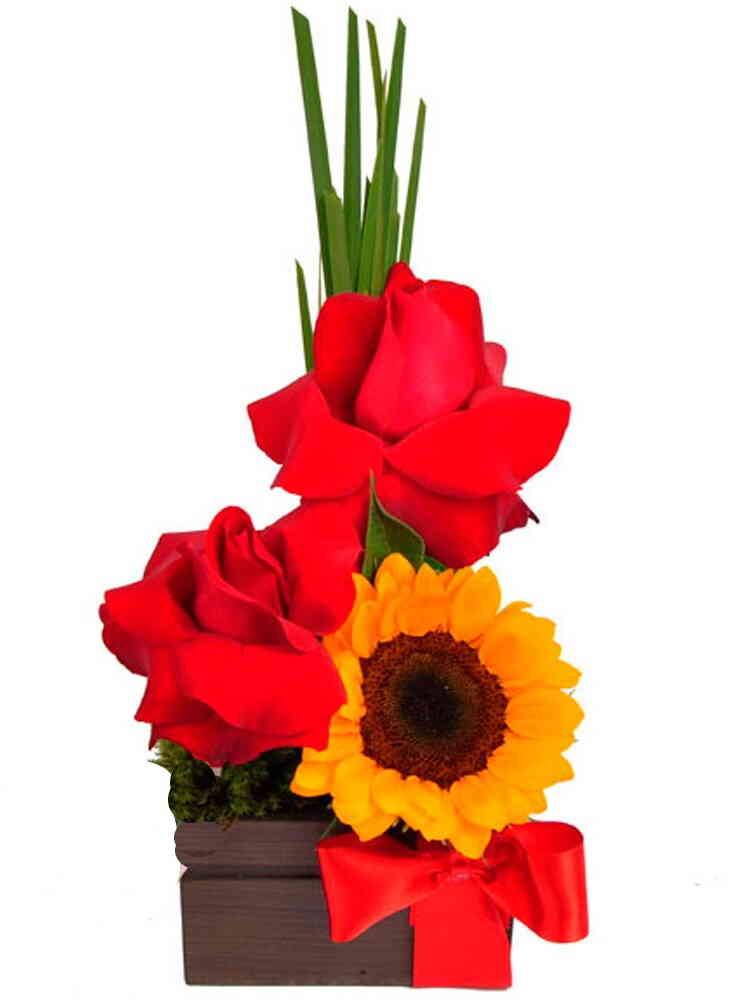 Arranjo de Flores Luz e A..