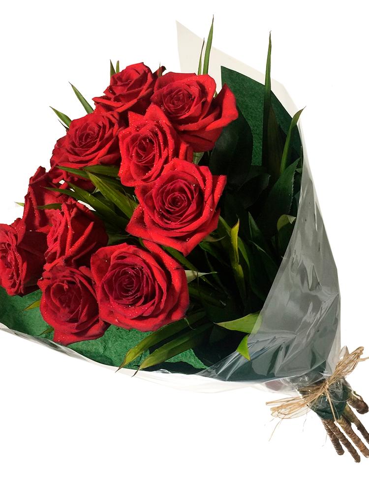As rosas mais lindas do n..