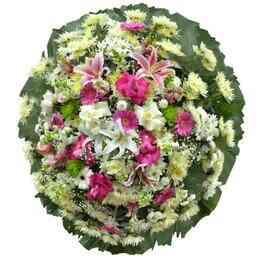 Coroa de Flores do Campo ..